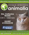 Clinique vétérinaire Animalia