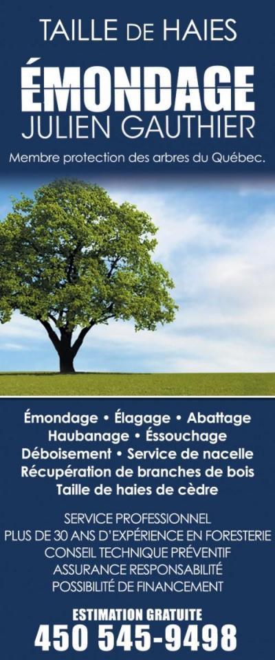 Arbres Services Brossard Saint-Jean
