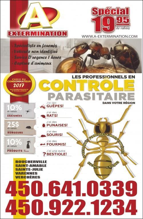 Exterminateur - Spécialiste en fourmis