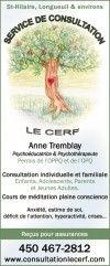 Service de consultation Le Cerf Anne Tremblay / Psycho-éducatrice