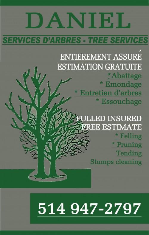 abattage arbre ile perrot
