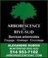 Arborescence Rive-Sud