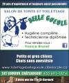 Salon de Toilettage Belle Gueule