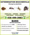 Bang Extermination - Boucherville