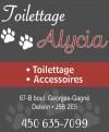 Toilettage Alycia