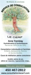 Service de consultation Le Cerf Anne Tremblay / Psychoéducatrice et Psychothérapeute